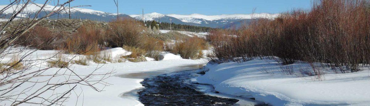 co river near frasier